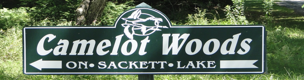 Camelot Woods Sackett Lake NY |  Camelot Woods Monticello NY |  Camelot Woods NY Homes for Sale